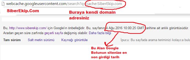 google siteme en son ne zaman geldi